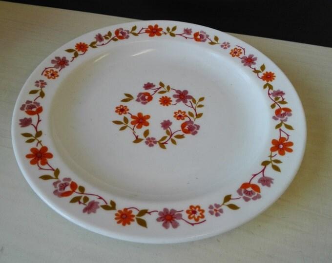 Arcopal scania, desert plates