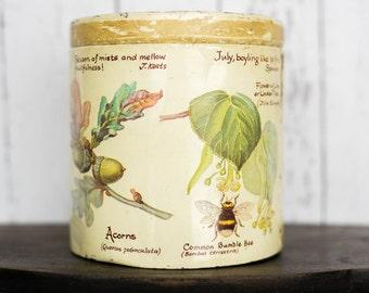 Vintage Tin Birds Bees Wild Flowers Trees - 70's Kitchen Storage Tin - Richard Webb Cookie Candy Tin - Shabby Chic Watercolour Nature Tin
