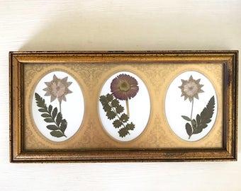 Framed Botanical Art. Real Hand Pressed Flower Framed. Pressed Botanicals. Vintage Gold Frame