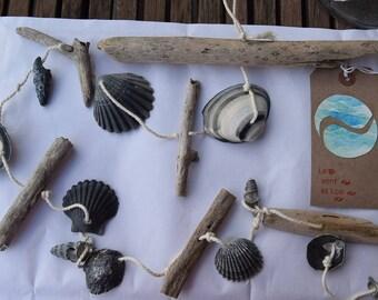 black shells, beach decor
