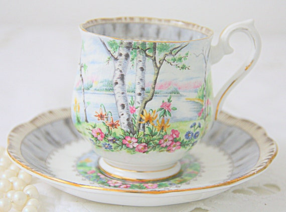 Vintage Royal Albert Bone China 'Silver Birch' Lady Size Cup and Saucer, England