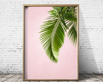 Photograpphy Palm Tree Wall Art Palm Tree Print Palm Tree Art Tropical Print Tropical Wall Art Tropical Art Print