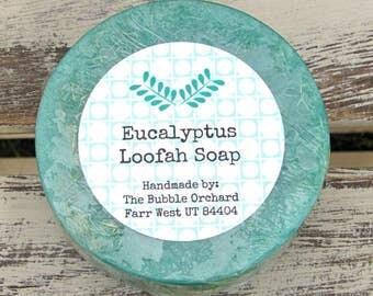 Eucalyptus Loofah Soap, Glycerin Soap, FREE SHIPPING