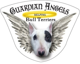 Guardian Angels Helping Bull Terriers Magnet