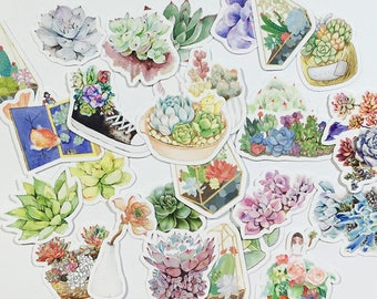 Little Succulent Plants #3 (26 pcs) // N20 // Die Cut Stickers // Planners //  Laptop Stickers  // Scrapbooking Essentials