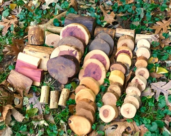 Tree Blocks 45 Piece Pro set -Shipping Included