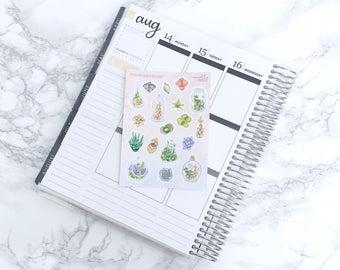 Pastel Succulents Decorative Planner Stickers