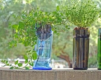 Hydroponic Garden In Wine Bottle Indoor Herb Garden Wine