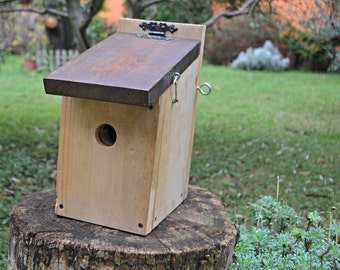 Standard Bird Nest / Nido Classico