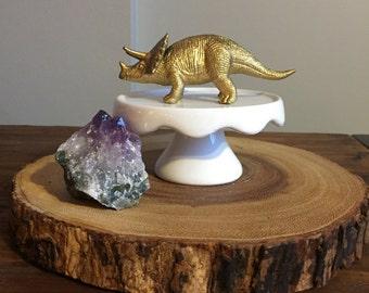 Dinosaur ring dish