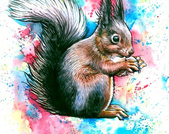 Set of 8 Squirrelly Cards
