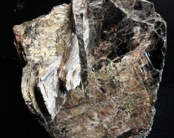 Large BIOTITE and muscovite