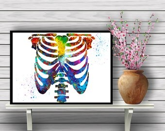 Colorful Human Chest Skeleton, Biology, Watercolor Room Decor, Science, Anatomy, Wall Hanging, Home Decoration, gift, Instant Download (364)