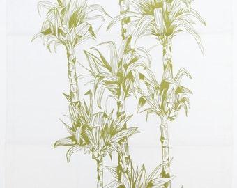 White ground cloth green ficus