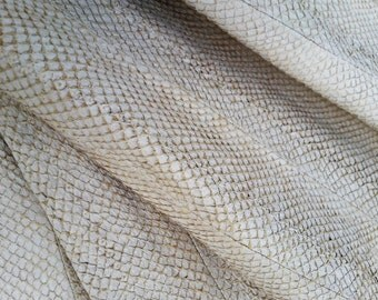 Real salmon sheet fish in natural crust. Size 2