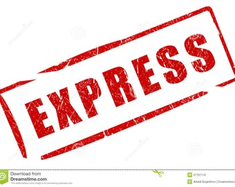 Express Processing or Shipping