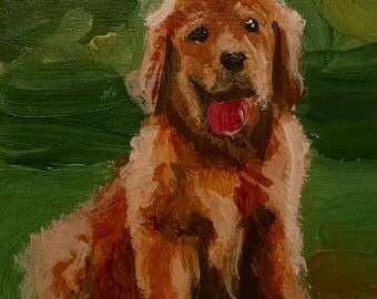 Golden Retriever Puppy - original painting