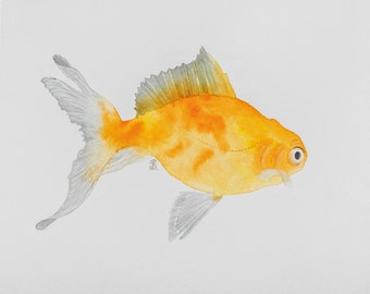 Golden fish watercolor original drawing / Not a Print / Art gift / Painting / Wall Decor / Goldfish