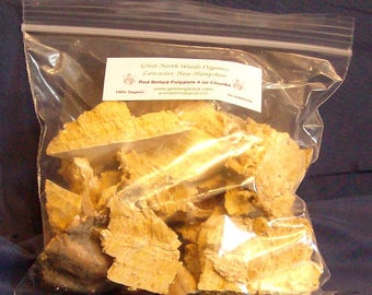 Red Belted Polypore Chunks 4 oz 100% Organic Medicinal Herbal Tea Sun Dried