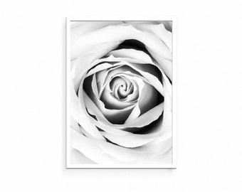 Black and White Rose Print, Rose Print, Flower Print, Floral Print, Botanical Print, Modern Wall Art, Contemporary Wall Art, Home Decor Art