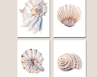 Shell print Set of 4 sea ocean print watercolor shell wall art decor print room decor bathroom decor poster 5 x 7 8 x 12 12 x 16 painting