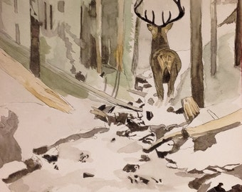 Watercolor painting. Deer in the forest