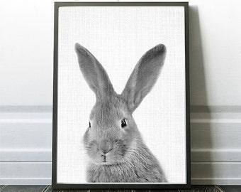 Rabbit Nursery Print, Rabbit Artwork, Bunny Print, Bunny Download, Black And White Rabbit,Printable Download, Rabbit Wall Art,Rabbit Poster
