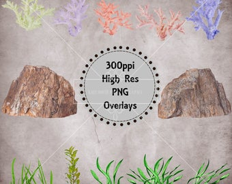 Sea Floor Overlays, Sea Weed, Coral, Rock Overlays, Separate High Resolution PNG Files, Instant Download.