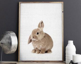 Rabbit Print, Nursery Rabbit Print, Woodland Animal Print, Rabbit Nursery Art, Rabbit Print Decor, Digital Download - 087