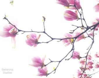 Magnolias in the Sky - Giclée Print - New York City Photography