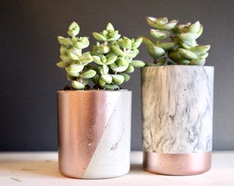 "Medium ""Tweenies"" Concrete Planter. Concrete Succulent Planter. 2.5"" Diameter. 3"" or 4"" height. Cylinder Concrete Planter Minimalist Planter"