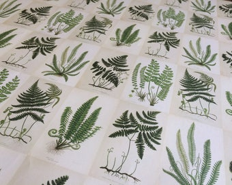 Botanical green fern map wrapping / craft paper sheets / plant lover gift wrap
