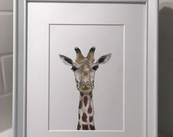 Giraffe - Art Print