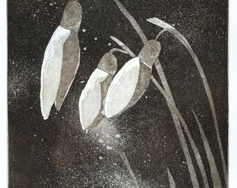 Snowdrops Original Etching