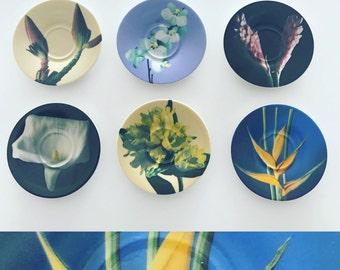 Botanical plant saucers, trinket dishes