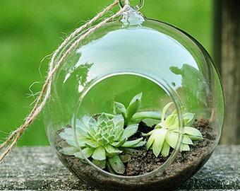 Transparent Clear Glass Round Terrarium Flower Plant Stand Hanging Vase Hydroponic Home Office Wedding Garden DecorSize: 8cm flat bottom