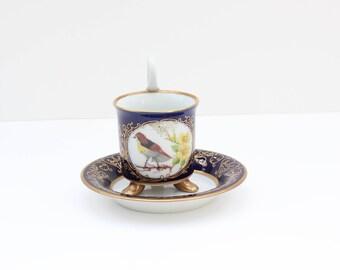 Hand Painted / Pirkenhammer / Coffee Cup & Saucer / Czech porcelain