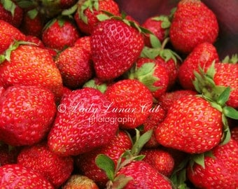 Summer Red berry photo Digital Photography Sweet food photo  Desktop wallpapers Strawberry photo Stock photography Download photo