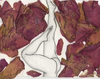 Lebanese rose petals