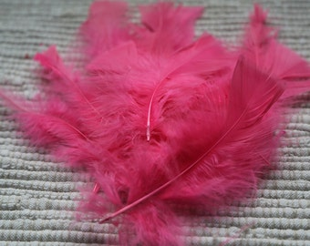 Decorative feathers: set of 15 feathers of pink colour