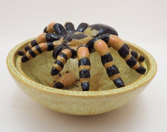 Orange / Red Knee Tarantula and beetle pot pourri bowl