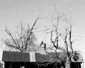 The Old Cow Barn   Ranch Photography