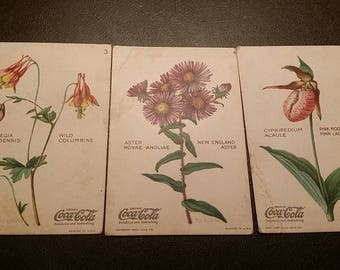 1923 Coca Cola Wild Flowers of America set of 3 cards