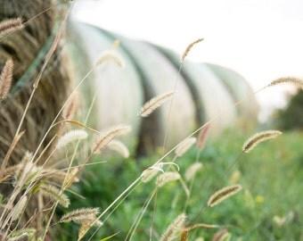 Nature Photography - Hay bales - Summer