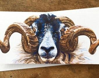 Swaledale Ram Greetings Card - Sheep Greetings Card - Sheep Card - Sheep Art - Blank Card - Birthday Card