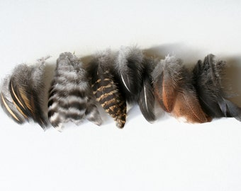 """Chicken feathers - Cruelty free - Natural - Real bird feathers - Assortment - Mix - 3""""-3.5"""" - qty 30"""