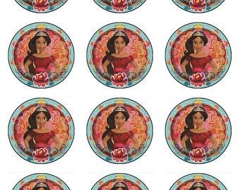 Edible Elena of Avalor cupcake toppers, Elena of Avalor cake decorations, Elena of Avalor birthday, Disney princess party supplies, edible