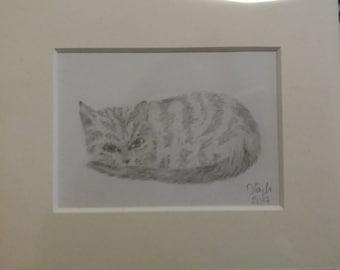 Mini sleeping cat pencil drawing