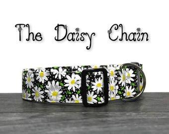 Daisy Dog Collar, Floral Dog Collar, Cute Dog Collar, Custom Dog Collar, Flower Collar for Dogs, Daisy Collars, Daisy Collar, Daisy Dog Lead