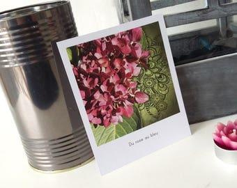 4 postcards - style polaroid - Breton nature theme